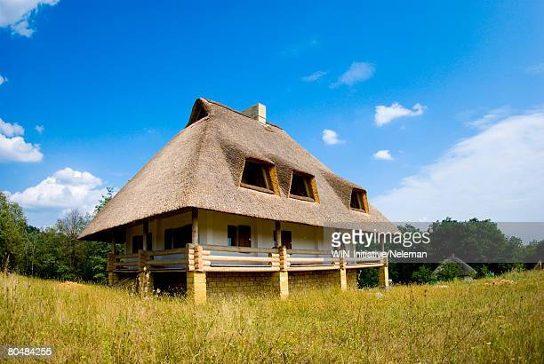 house with a thatch roof - ziegelbau stock-fotos und bilder