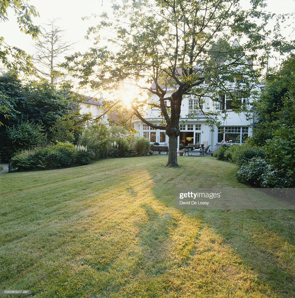 House with lawn : Stock Photo