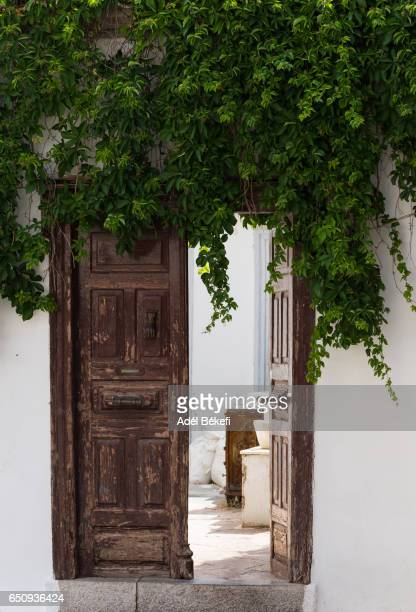 a house with old door in the street (hydra, greece) - hydra greece stock photos and pictures