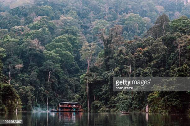 houseboat at temengor lake in royal belum rainforest, perak malaysia - shaifulzamri stock pictures, royalty-free photos & images