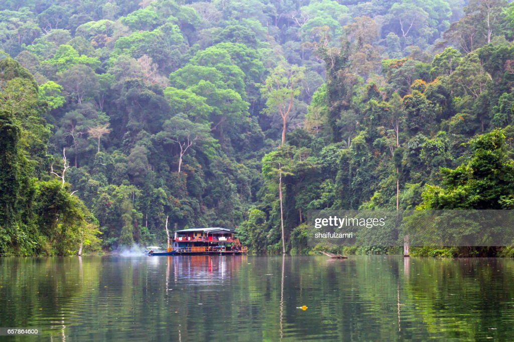 Houseboat at Temengor Lake in Royal Belum rainforest, Perak Malaysia : Stock Photo