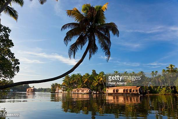 houseboat, backwaters, alappuzha, kerala, india - kerala stock pictures, royalty-free photos & images