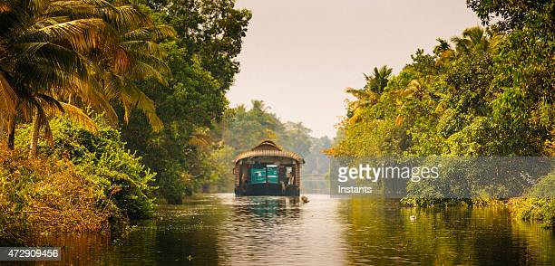 houseboat on the kerala backwaters in south of india - tropical tree stock pictures, royalty-free photos & images