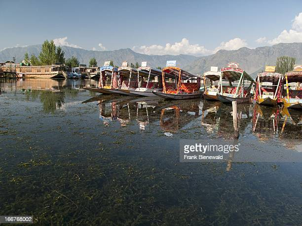 SRINAGAR JAMMU KASHMIR INDIA Houseboats on Dal Lake are most popular to accommodate tourists in Srinagar