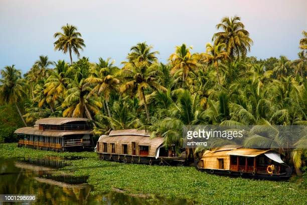 houseboats on vembanad lake, kerala, india - houseboat stock pictures, royalty-free photos & images