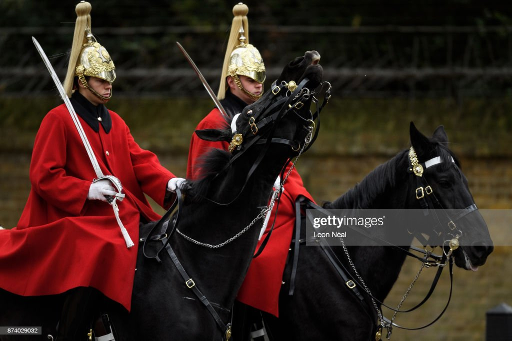 A Household Cavalry horse rears it's head, before members of the King's Troop Royal Horse Artillary take part in a 41-gun salute to mark the 69th birthday of the Prince of Wales at Green Park on November 14, 2017 in London, England. Six First World War-era 13 pounder Field Guns were used to fire the salute, while another gun salute took place at the Tower of London.