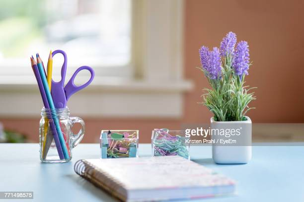 Houseplant With Office Supply On Table