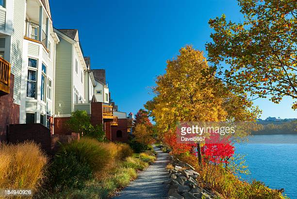 Houses and Autumn trees in Pittsburgh