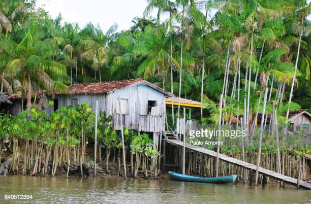 Houses at riverbank in the Amazon,Brazil