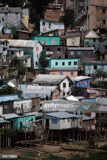 Houses built on stilts to protect against rising waters that can sometimes reach 15 metres in Manau