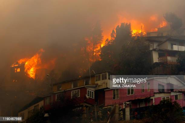 Houses burn during a forest fire at the Rocuant hill in Valparaiso, Chile, on December 24, 2019. - Some 50 houses were affected by a forest fire...