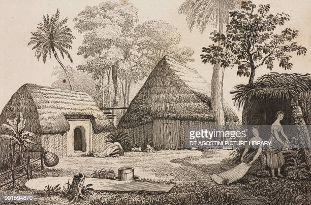 Houses in a village Hawaii Islands engraving by Danvin and Chavannes from Oceanie ou Cinquieme partie du Monde Revue Geographique et Ethnographique...