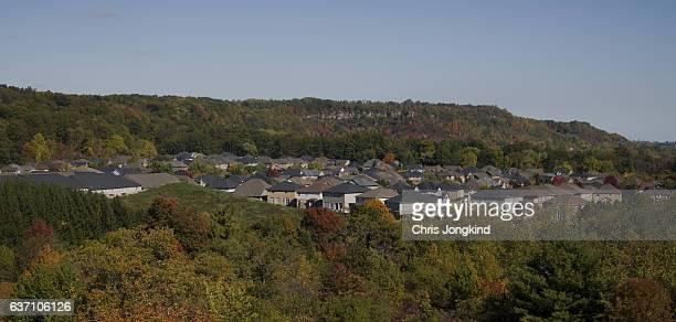 Houses in Forested Valley