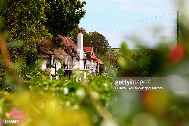 houses in rural landscape - village stock pictures, royalty-free photos & images