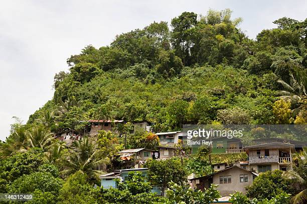 houses in the hills of golden valley, lahug - cebu stock photos and pictures