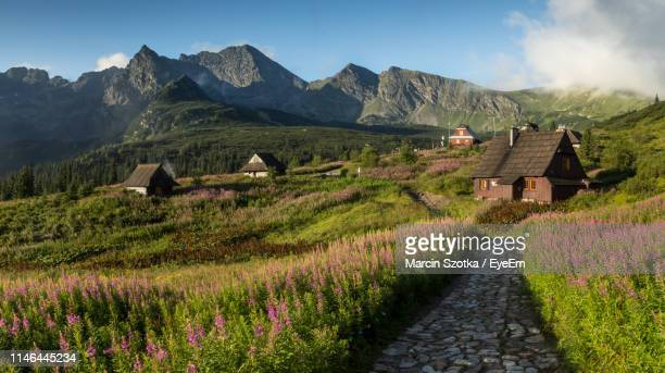 houses in village against sky - zakopane stock pictures, royalty-free photos & images