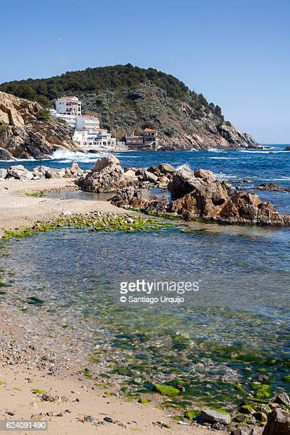 Houses on a cove in Costa Brava
