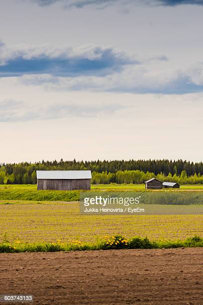 houses on agricultural field against cloudy sky - heinovirta stock pictures, royalty-free photos & images