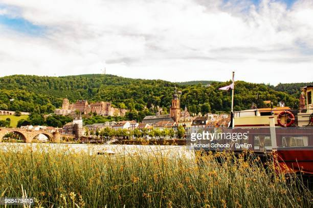 houses on field by buildings against sky - baden württemberg stock pictures, royalty-free photos & images