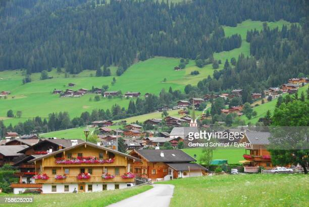 houses on green landscape against sky - gerhard schimpf stock pictures, royalty-free photos & images