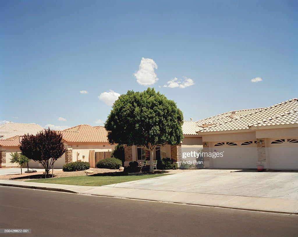 Houses on street : Stock Photo