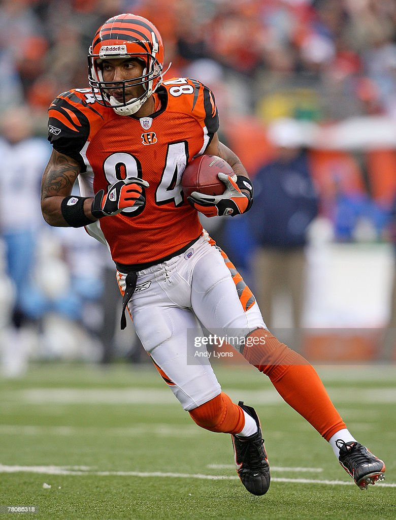 T.J. Houshmandzadeh #84 of the Cincinnati Bengals runs with the ball during  the NFL game