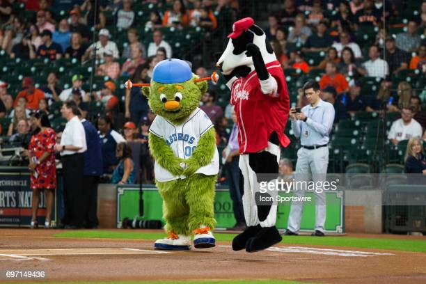 Houston Astros mascot Orbit and Chickfila mascot cow on homeplate prior to a MLB baseball game between the Houston Astros and the Boston Red Sox on...