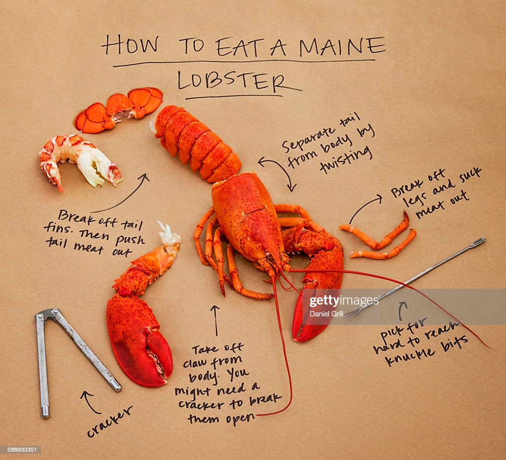 How to eat lobster instructions : Stock Photo