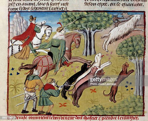 How to hunt the deer Miniature from 'The Book of the Hunt' by Gaston III Phoebus Count of Foix Lord of Bearn 13871388 Conde Museum Chantilly France