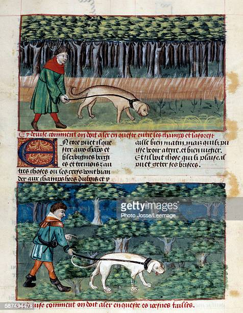 How to lead dogs Miniature from 'The Book of the Hunt' by Gaston III Phoebus Count of Foix Lord of Bearn 13871388 Conde Museum Chantilly France