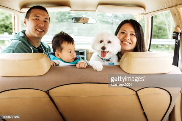 how to travel with baby and dogs - family inside car stock photos and pictures
