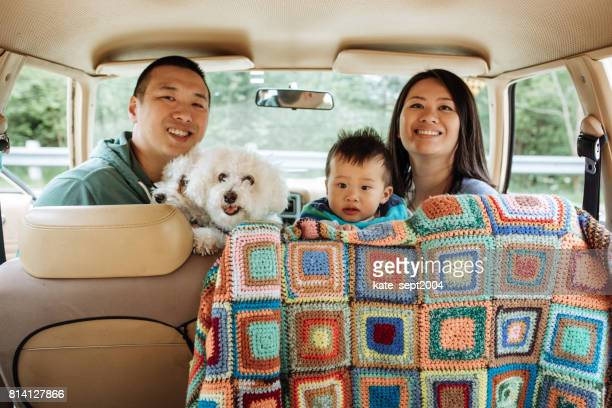 How to travel with baby and dogs