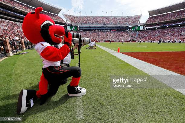 Howl mascot of the Arkansas State Red Wolves holds a photographer's camera in the end zone during the game against the Alabama Crimson Tide at...