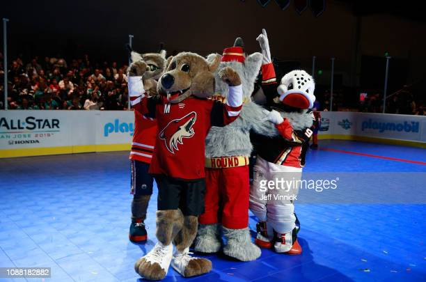 Howler the Coyote of the Arizona Coyotes and Wild Wing of the Anaheim Ducks participate in the 2019 NHL AllStar Mascot Showdown on January 24 2019 in...