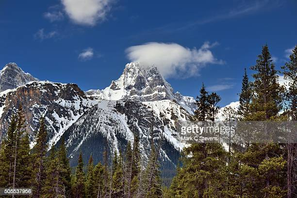 howse peak and north waputik mountains - banff stock photos and pictures