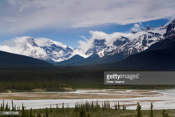 howse river viewpoint, saskatchewan crossing, banff national park, alberta, canada - peter adams stock pictures, royalty-free photos & images