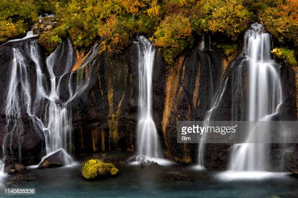 hraunfossar waterfall pour into hvita river, borgarfjordur district, iceland - lava plain stock pictures, royalty-free photos & images
