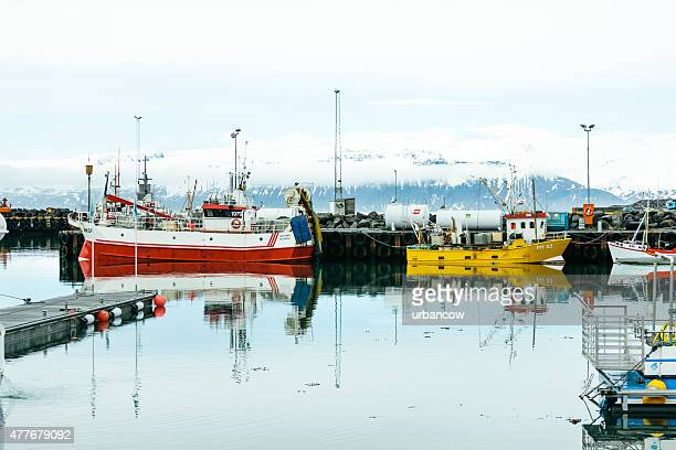 Húsavík Harbour, boats and snow-capped mountains beyond. Iceland