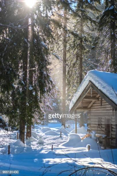 Hütte im Schnee im Wald