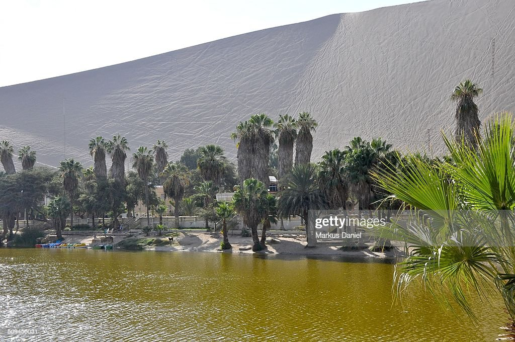 Huacachina Oasis Lake and dune : Stock-Foto