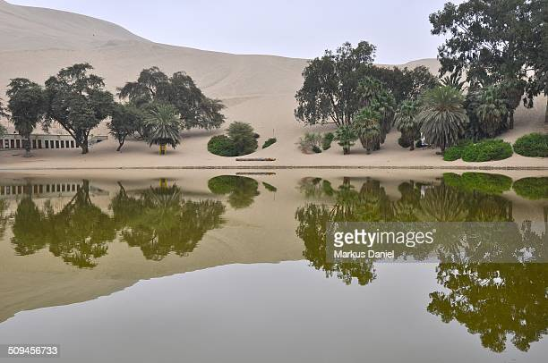 Huacachina Oasis Lake Reflection, Ica, Peru