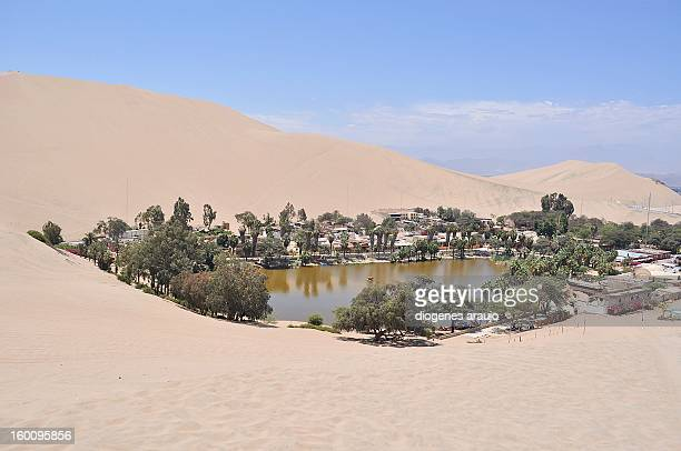 huacachina - pisco peru stock photos and pictures