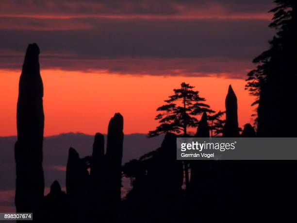 Huangshan stone columns and tree silhouettes and sunrise sky - China