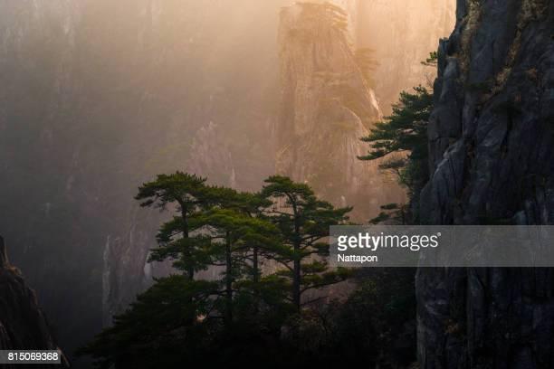 huangshan with sea of clouds, anhui province, china - flanco de valle fotografías e imágenes de stock
