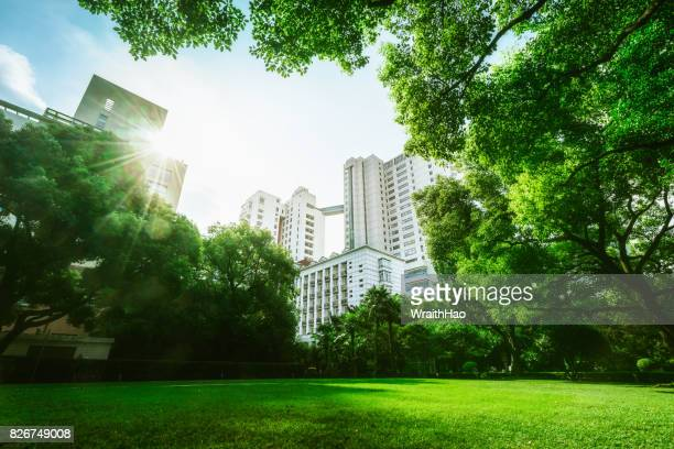 huashan garden - public park stock photos and pictures