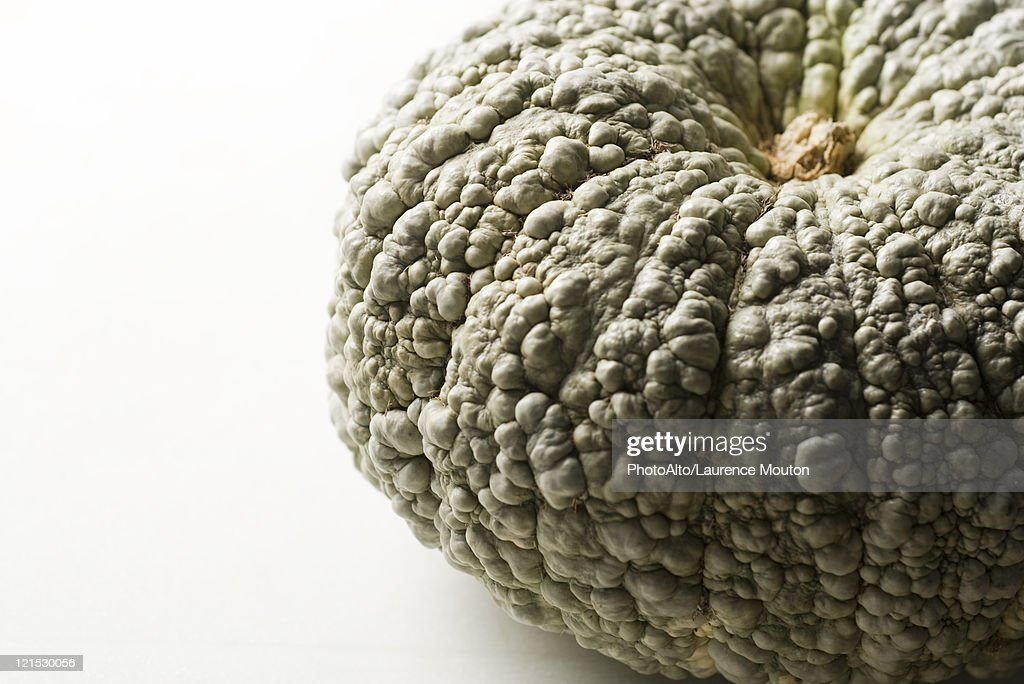 Hubbard squash, cropped : Stock Photo