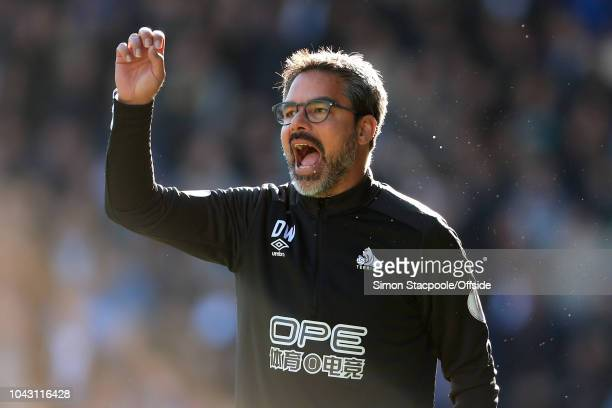 Huddersfield manager David Wagner gestures during the Premier League match between Huddersfield Town and Tottenham Hotspur at the John Smith's...