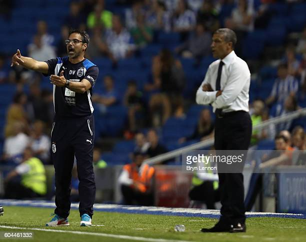 Huddersfield Town Head Coach David Wagner instructs his team during the Sky Bet Championship match between Brighton Hove Albion and Huddersfield Town...