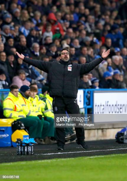 Huddersfield Town manager David Wagner reacts on the touchline during the Premier League match at the John Smith's Stadium Huddersfield