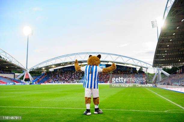 Huddersfield Town mascot Terry the Terrier during the Carabao Cup First Round match between Huddersfield Town and Lincoln City at John Smith's...